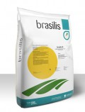 brasilis II